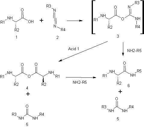 Carbodiimide coupling mechanism